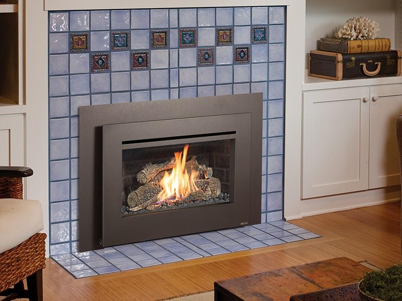 Awe Inspiring Fireplace Xtrordinair 32 Dvs Gas Fireplace Insert Hearth Beutiful Home Inspiration Aditmahrainfo
